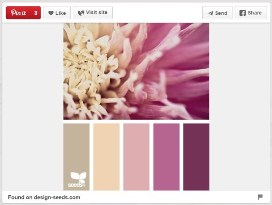 That palette is one of many found on http://design-seeds.com/. You can use any of those terrific color guides to help you DIY design not just websites, ...